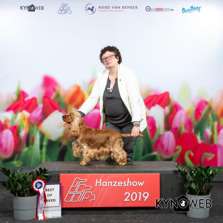 April 2019 HANZESHOW 2019 Zwolle Liba
